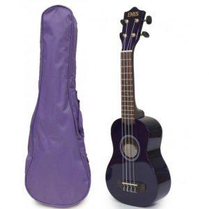 purple uke and bag
